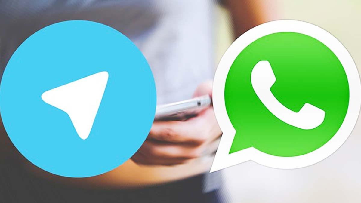 Tipe Anggota Grup Whatsapps